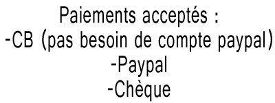 Paiement possible site